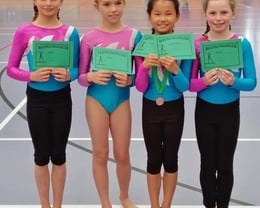 Womens Artistic Gymnasts (WAG) Competitive